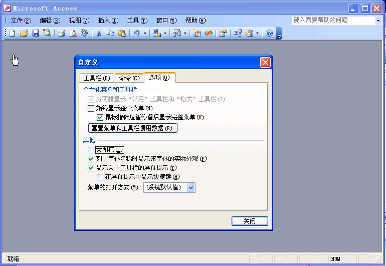 access2003绿色版(access2003 中文绿色版)截图0