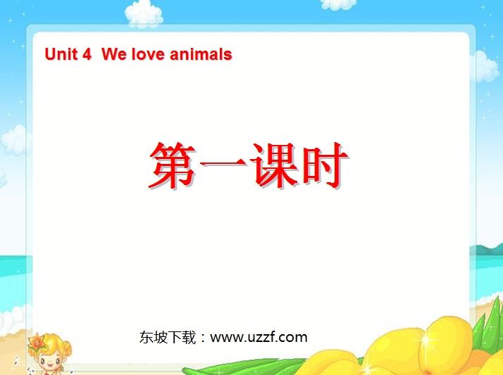 英文动物单词ppt图片
