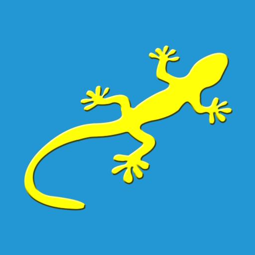 自驾护照1.0.2 安卓免费版