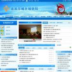 蓝色时尚的城乡规划局网站模板