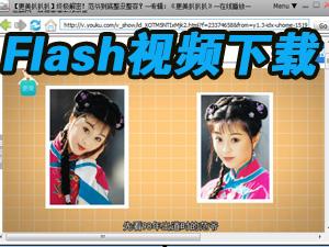 Flash视频下载工具(Flash Video Capture)截图0