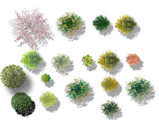 清新立体树平面素材psd格式免费版【ps树平面素材】