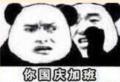 你国庆加班熊猫表情包
