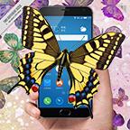 蝴蝶恶作剧app