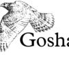 GoshawkDB0.3 官方版
