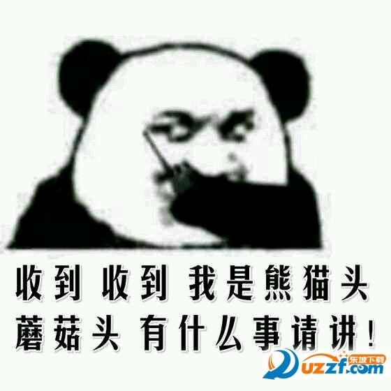 呼叫表情头系列动态|熊猫熊猫呼叫熊猫我是想你表情可爱大全蘑菇图片图片