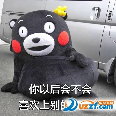 熊本熊男生最怕的问题表情包高清无水印版图片