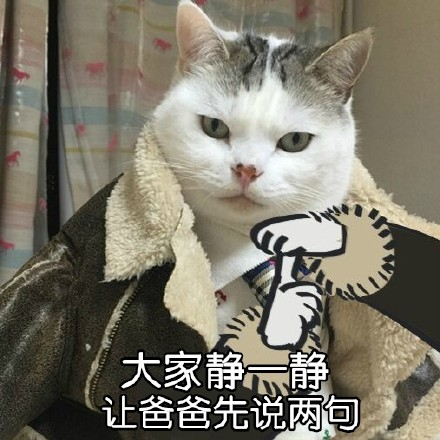 瓜皮猫带字搞笑表情包