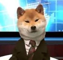 日本电视台电脑直播软件最新免费版