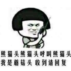 熊猫熊猫呼叫熊猫我是蘑菇头表情图片