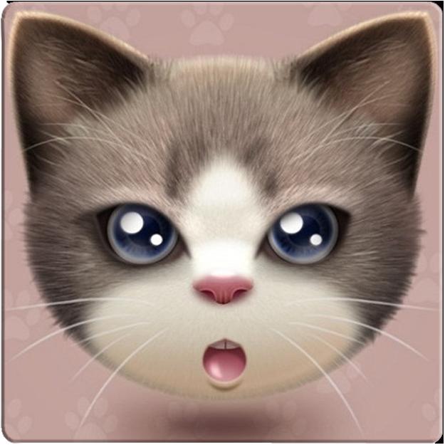 懒猫转发注册机1.0 安卓免费版