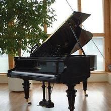 钢琴模拟软件(Everyone Piano)1.7.9.18  最新免费版