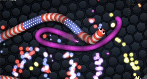 蛇蛇大作战ios版(slither.io)截图