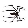 影视蜘蛛种子搜索器