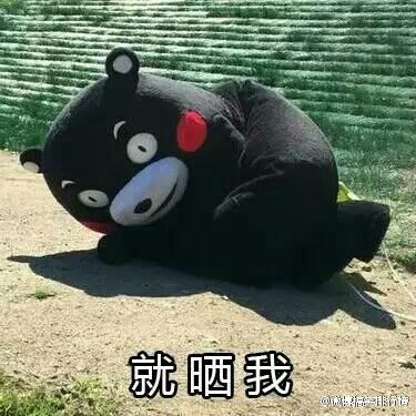 雨露均沾熊本熊表情包