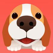 闻闻窝宠物社区app3.4 官方ios最新版