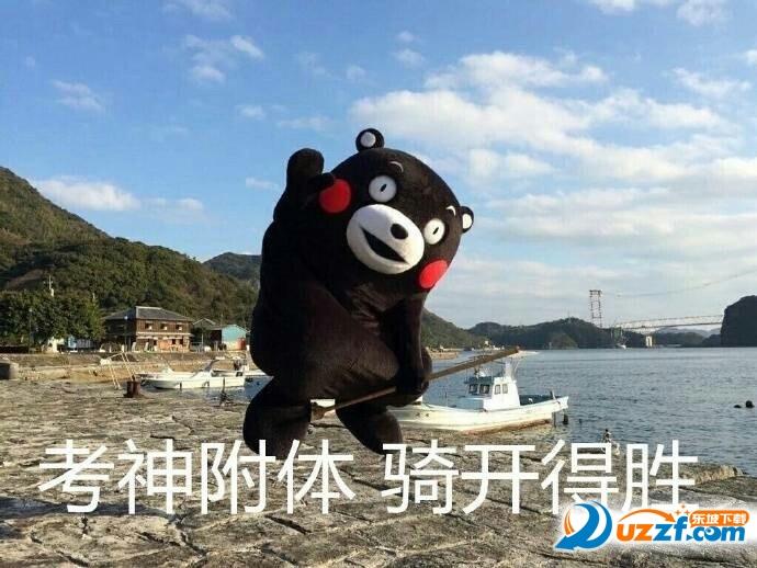 熊本熊v表情不挂科表情安慰的抱抱表情包图片