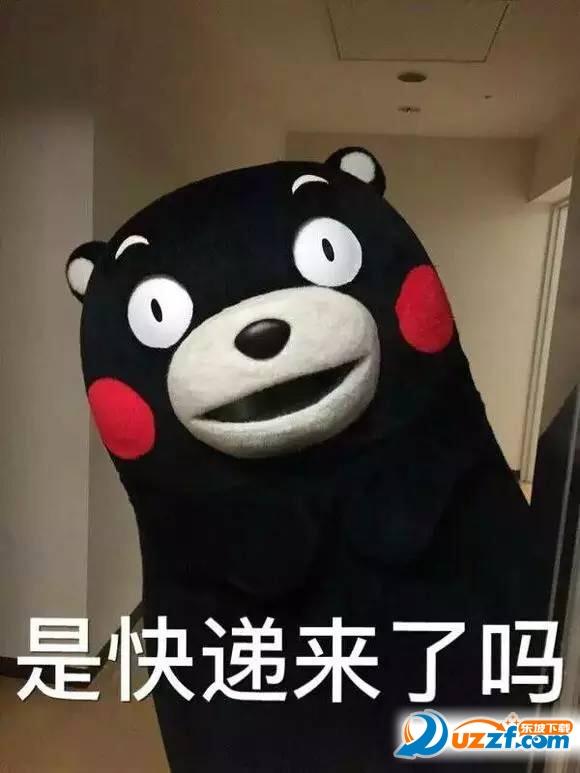 熊图案的衣服什么牌子