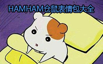 hamham仓鼠表情包大全