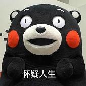 熊本熊我可能是转了假锦鲤表情包