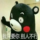 熊本熊超实用斗图表情包完整无水印版