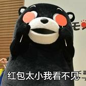 熊本熊红包表情图片高清无水印版