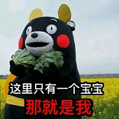熊本熊这里只有一个宝宝表情包超清无水印版