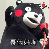 熊本熊行酒令表情包超清无水印版