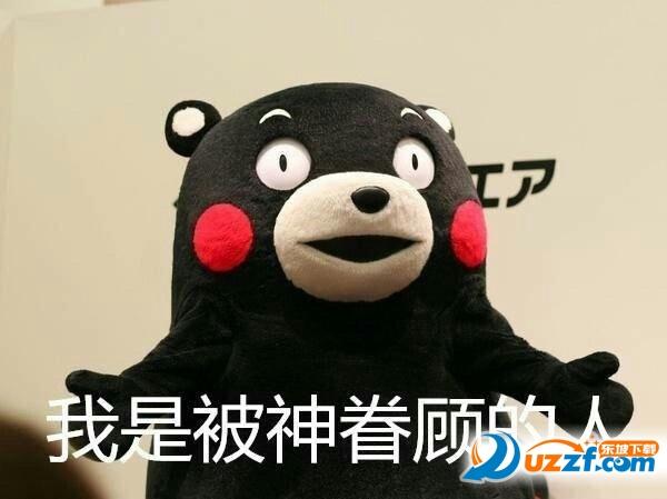 熊本熊减肥不挂科表情下载|熊本熊考试不挂可爱的考试表情包图片