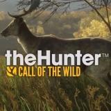 猎人荒野的召唤pc联机版