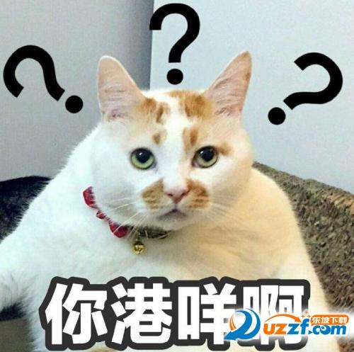 楼楼猫gif表情大全小动态奇表情包萌动态图片