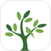呼唤森林app安卓版