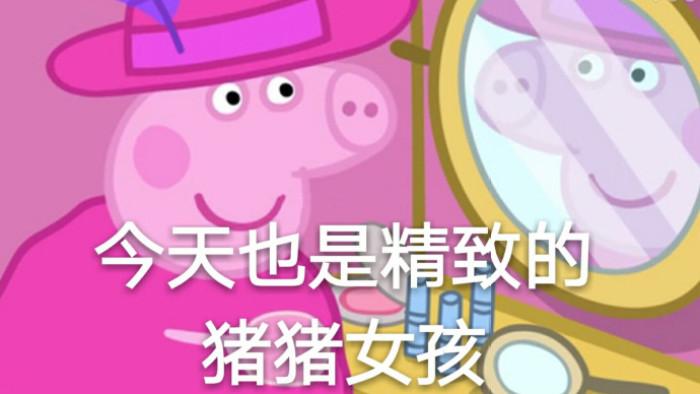 今天也是精致的猪猪女孩表情包图片截图0