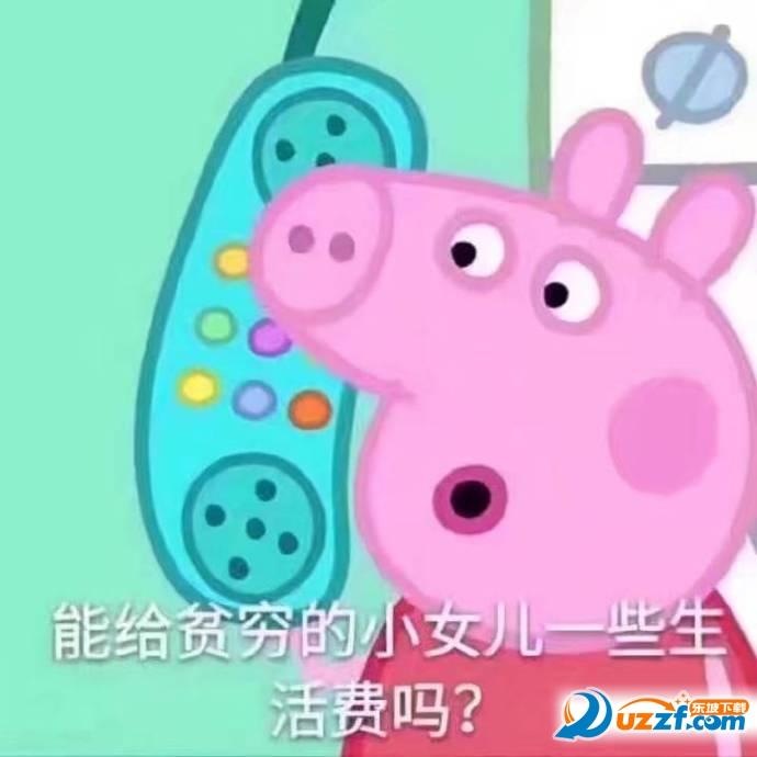 可爱小猪聊天背景