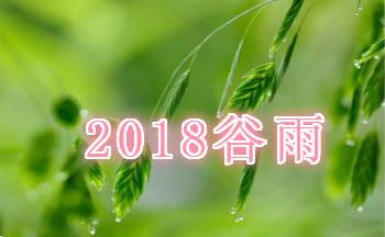 2019谷雨