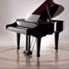 缘点键盘钢琴1.0 绿色免费版