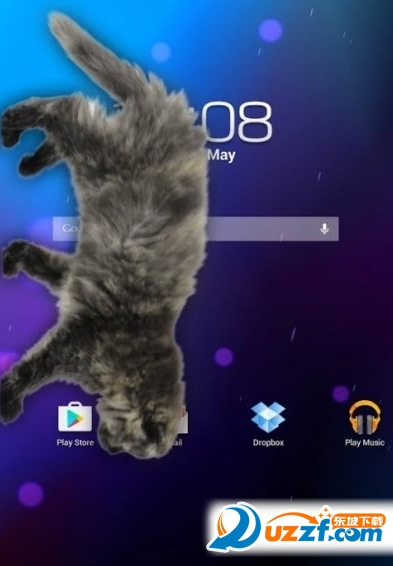 可爱小猫动态屏幕app