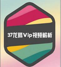 37龙腾VIP视频解析器1.0 绿色免费版