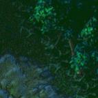 修神之路1.24qg999钱柜娱乐附地图攻略