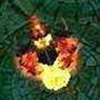 恶魔城堡2v1.1汉化版免费下载