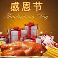 感恩节贺卡制作图片精选版