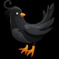 乌鸦直播app