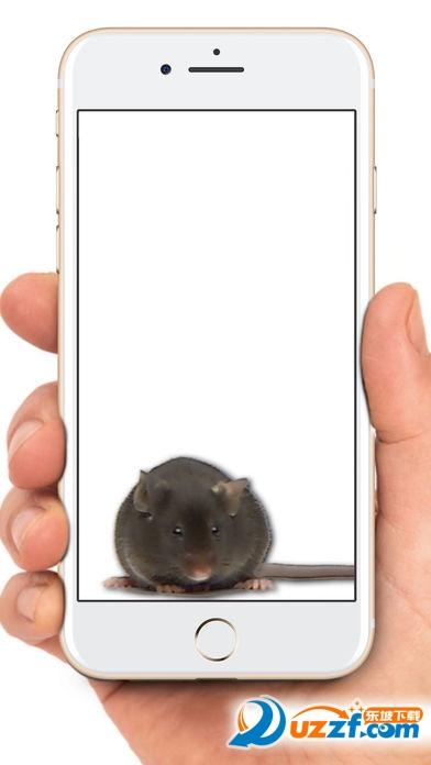 手机屏幕老鼠恶作剧软件截图