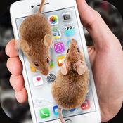 手机屏幕老鼠恶作剧软件