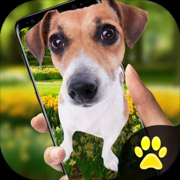 手机屏幕养狗养宠物软件