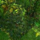 苍灵世界1.0.1qg999钱柜娱乐