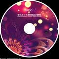 光盘复制拷贝工具(DVDFab Portable)9.2.0.8  绿色破解版【含使用教程】