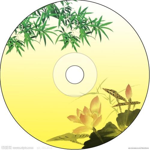 DVD光盘完美快速复制工具(DVDFab Platinum)9.2.0.1 简繁体中文特别版