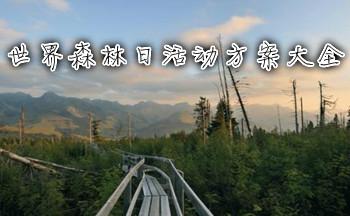 世界森林日活动方案大全