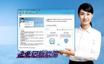 企业记账软件